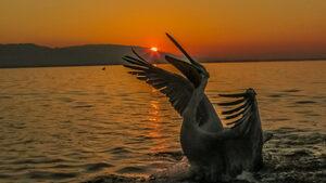 Посрещане на слънцето