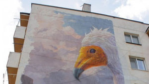 """Графити на птици и животни от """"Натура 2000"""" ще покрият сгради в 5 областни града"""