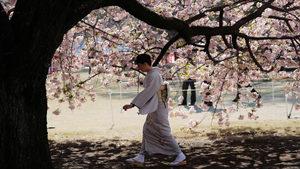 4+1 | Японската ваканция, която тревожи инвеститорите, за хаотичната европейска външна политика и още
