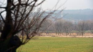 """Фонд """"Земеделие"""" преведе близо 76 млн. лв. единно плащане на площ за 2018 г."""