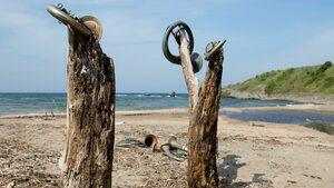 """Студенти от България и Германия създават изкуство за опазване на плаж """"Корал"""""""