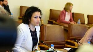 Не сме най-черните в ЕС по злоупотреби с къщите за гости, смята министър Танева