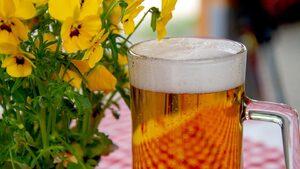 Учени повишиха антиоксидантните качества на бирата с добавяне на виолетка и латинка