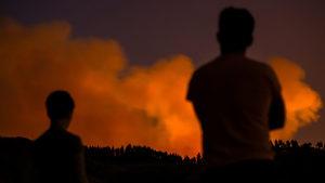 Горски пожари наложиха евакуацията на близо 2000 души на Канарските острови