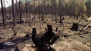 Опасност от пожари има в 15 области