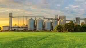На върха на фуражния бизнес