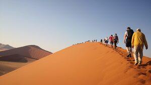 Фотогалерия: Пустинята Намиб