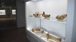 Музеят на родопския карст в Чепеларе отваря врати след пълно преобразяване