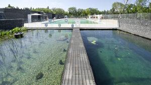 Когато общественият плувен басейн не е малка химична лаборатория