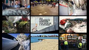 """Голямата снимка: Най-добрите снимки на """"Дневник"""" през октомври"""