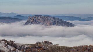 Фотогалерия: Зубри, елени, лешояди и диви коне се завръщат в Източните Родопи