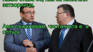 """Фотогалерия: """"Търсим кандидат-кметове без тераси"""" и още комикси"""