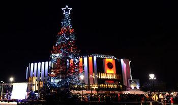 Фотогалерия: Коледната елха на София вече свети пред НДК