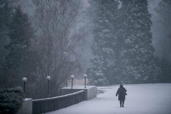 Снимка на деня: Януарски сняг в София