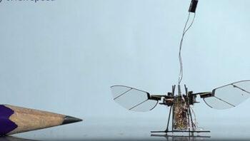 Робот с размерите на муха ще замества дроновете в мисии до труднодостъпни места