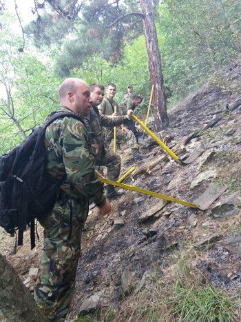 Около 60 декара борова гора са изгорели при пожара край Карлово (обзор)