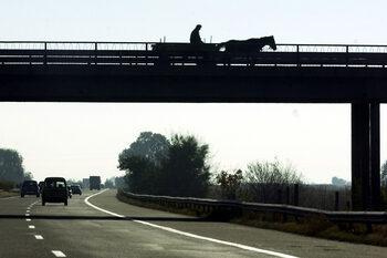 България се включва в проект за подобряване на пътната безопасност в ЕС