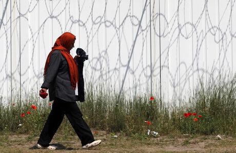 """Управляващата партия на министър-председателя """"Фидес"""" издигна ограда с бодлива тел по границата на Унгария със Сърбия срещу мигрантите."""