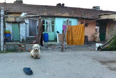 В ромската махала в Русе.