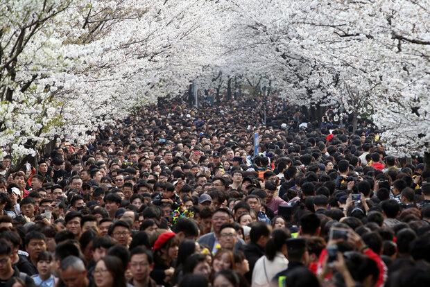 Фотогалерия: Световните снимки на деня - 23-24 март