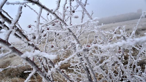 В най-студения град Кюстендил зимата взе три жертви