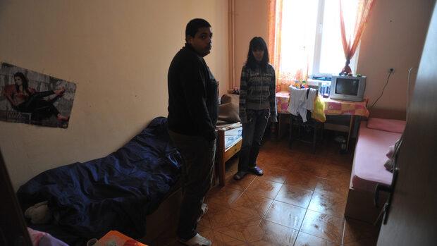 Жители на пловдивско село не искат частен приют за бездомни