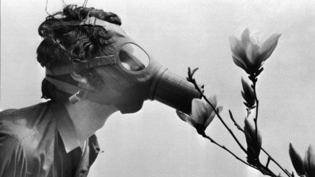 Замърсеният въздух е свързан с лоши когнитивни способности, показа проучване
