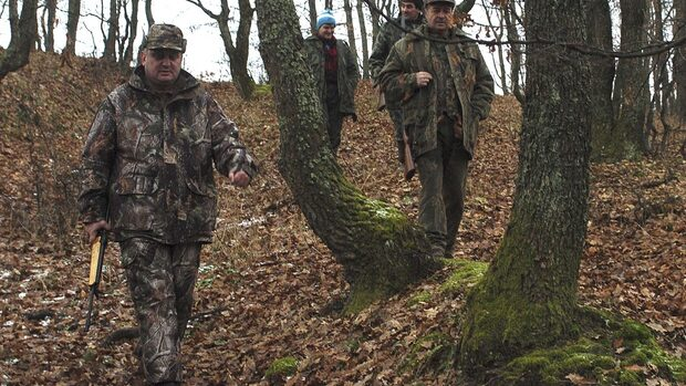 Ловът на дивя свиня се разрешава от 29 септември