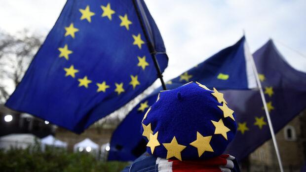 Заради Брекзит десетки ветеринари от ЕС преминават интензивни курсове по холандски